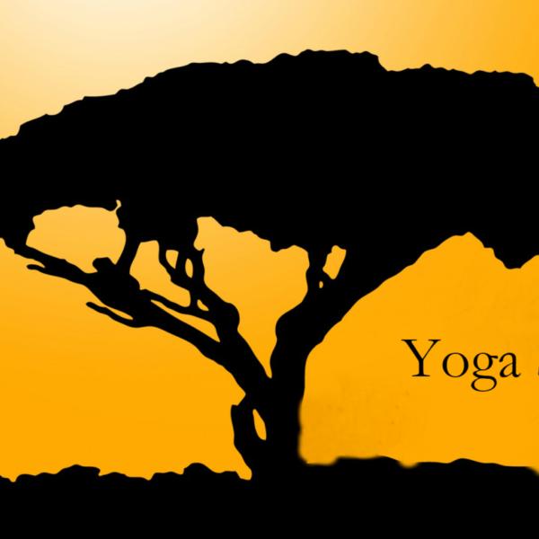 Yoga Shelley Portsmouth