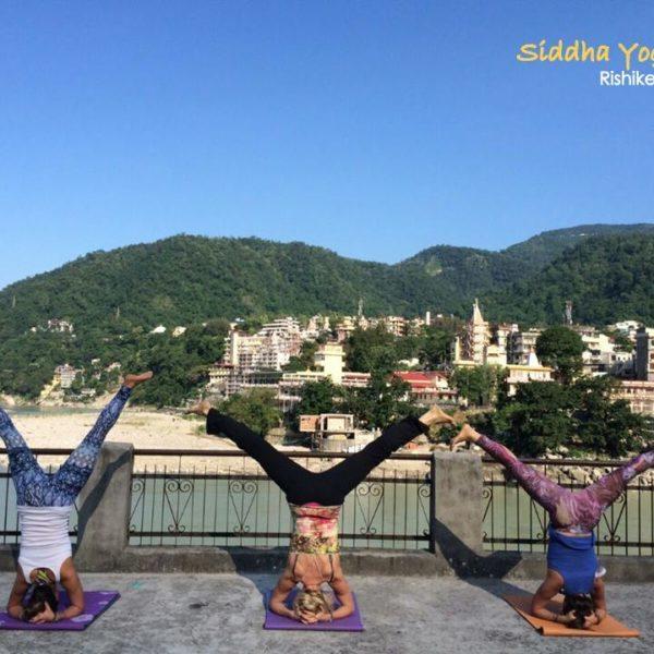 Sidhha Yoga Peeth – Yoga Teachers Training Courses 200 Hour, 300 Hour Rishikesh, India