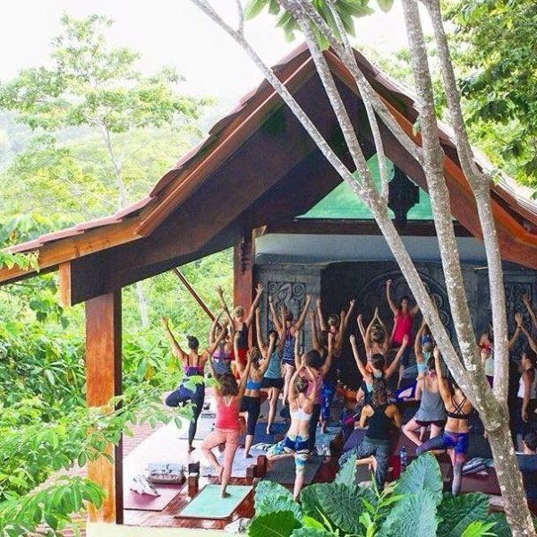 Karrie Lee Yoga
