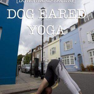 Dog Eared Yoga