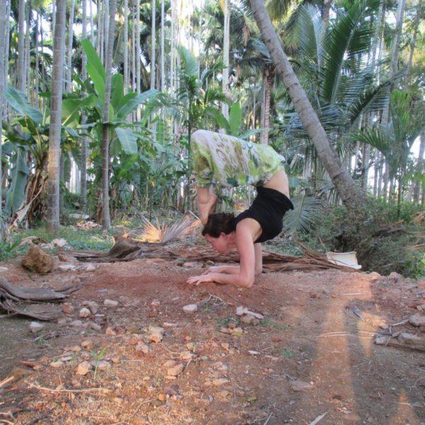 Vinyasa Yoga  with Erin