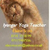 Iyengar  yoga class