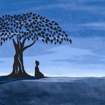 Serenity yoga Wirral