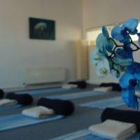 Akasha-Blue-Orchid