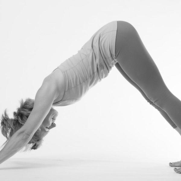 Basic-Yoga-Intel-Every-Yogi-and-Newbie-Should-Know-3.jpg
