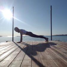 Plank in Cape Cod