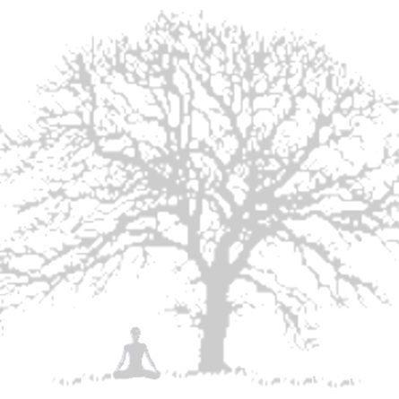 Rachel-Bayliss-Yoga-Oak-Tree-Image