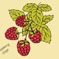 Raspberry-yoga-logo.png