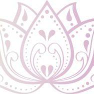 SER_LOTUS_Pink-Grad
