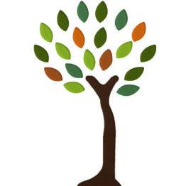 tree-jpeg